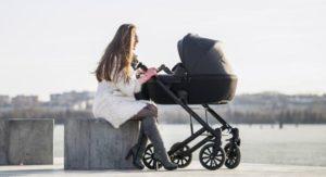 stroller reversible